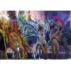 Начался набор девушек в шоу-балет в цирк в Китае