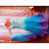 Продам новое платье Стандарт+пошив