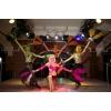 танцевальные костюмы для шоу-балета